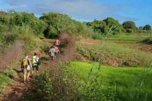 Begidro à Tsimafana, Tsiribihina, Morondava 8