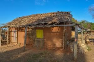Begidro à Tsimafana, Tsiribihina, Morondava 39