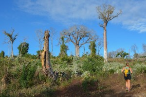 Begidro à Tsimafana, Tsiribihina, Morondava 49