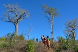 Begidro à Tsimafana, Tsiribihina, Morondava 57