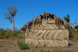 Begidro à Tsimafana, Tsiribihina, Morondava, Madagascar 57