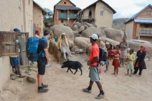 Sur la piste du Tsaranoro, Étape 1 - Sendrisoa à Ambalamanandray, Vallée de Namoly, Madagascar 25