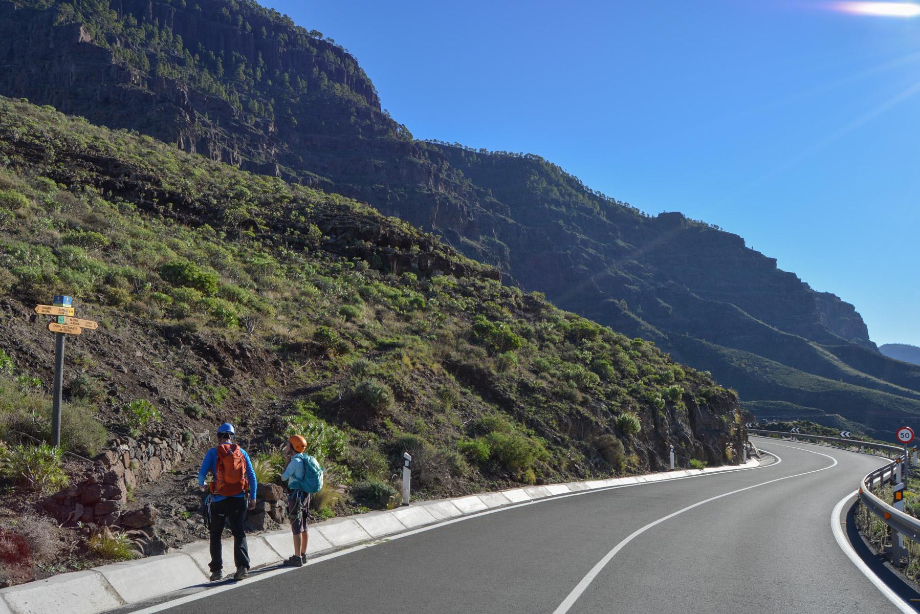 Amor Cocodrilo, Gran Canaria 4