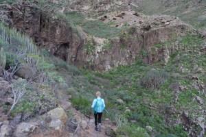 Camino de Güi-Güi, Gran Canaria 13