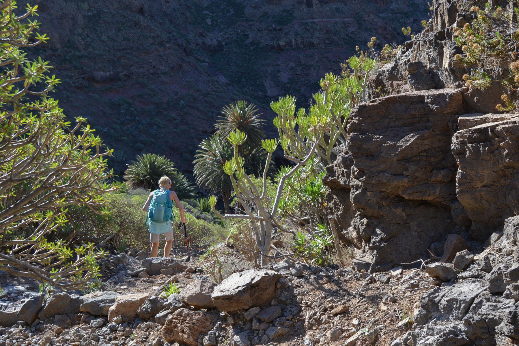 Camino de Güi-Güi, Gran Canaria, Espagne 29