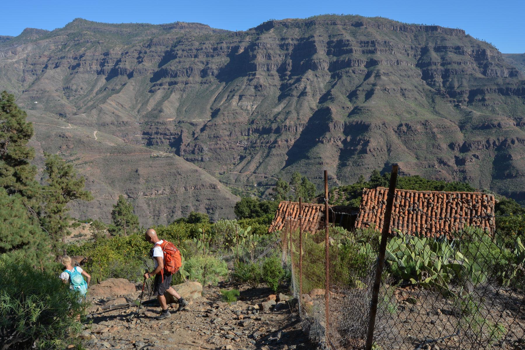 Montaña de Tauro, Gran Canaria, Espagne 49
