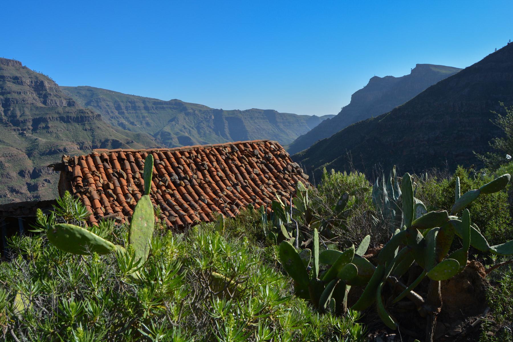 Montaña de Tauro, Gran Canaria, Espagne 50