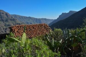 Montaña de Tauro, Gran Canaria 49