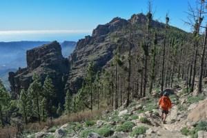 Pico de las Nieves, Gran Canaria 8
