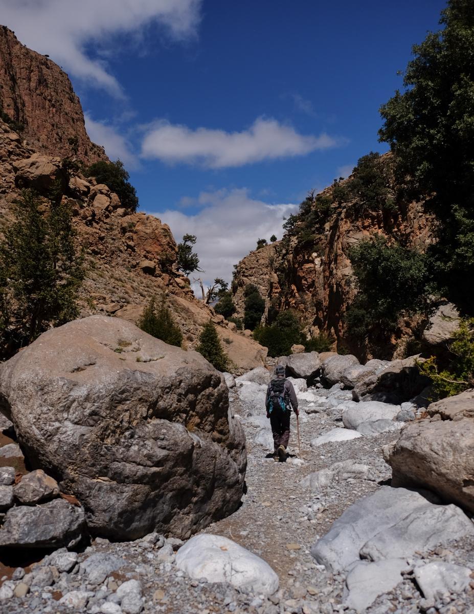 Tagoujimt n'Tsouyane, Taghia, Maroc 54
