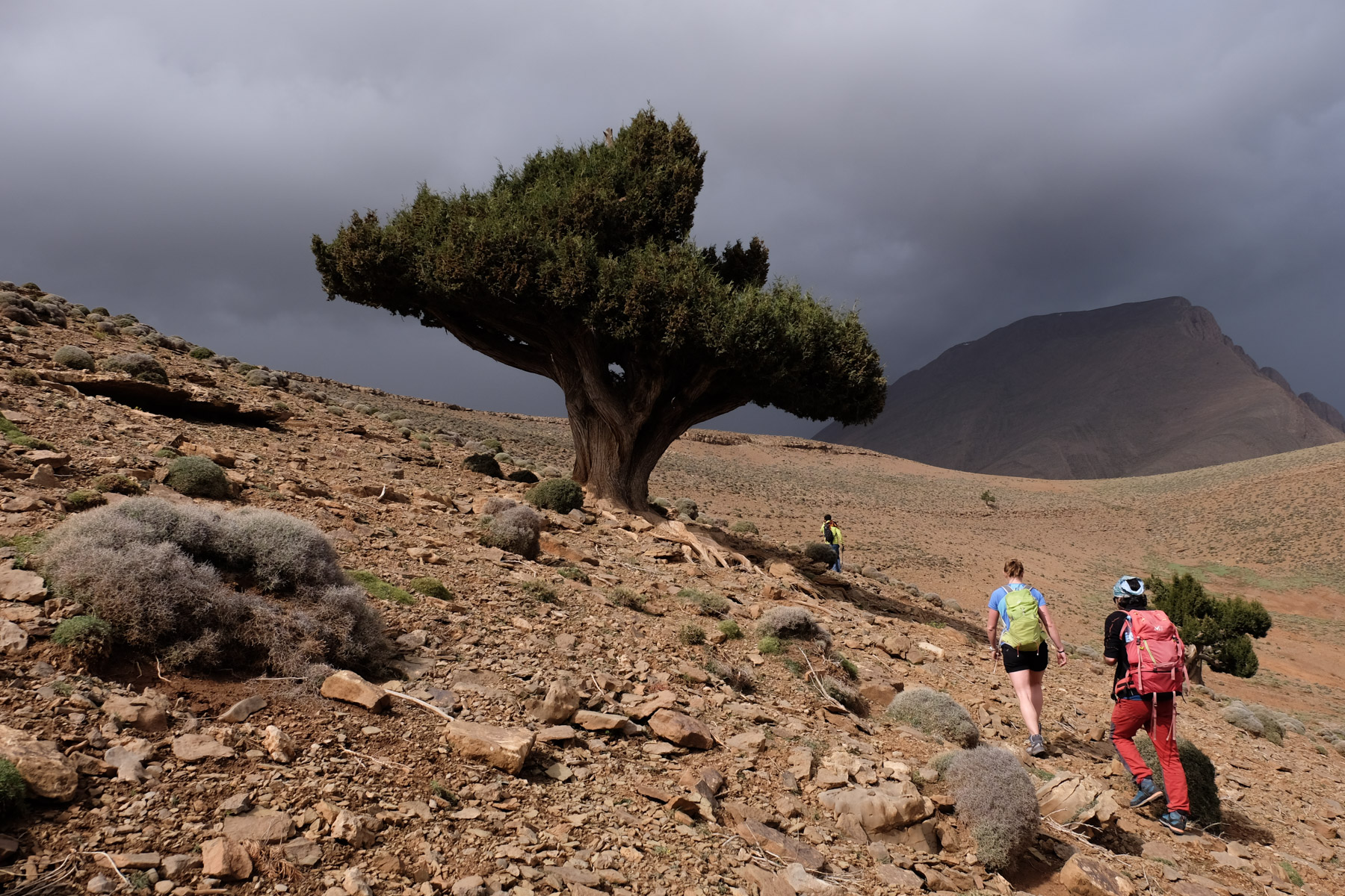 Aroudane, Zaouia Ahansal, Maroc 28