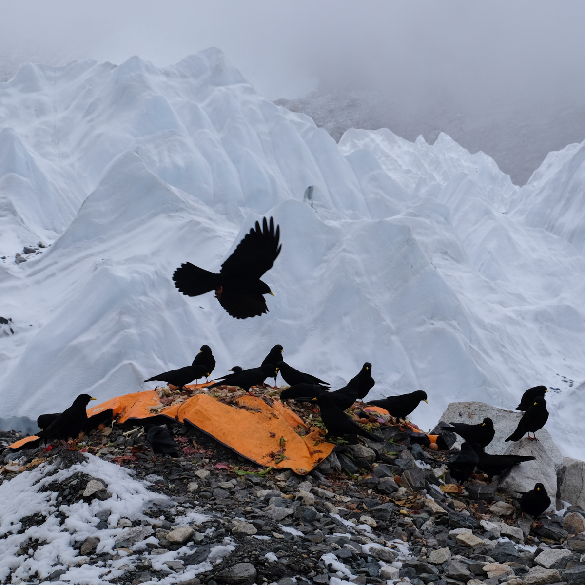 Everest Base Camp, Everest 3 pass #2 42