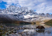 Everest 3 passes, Khumbu Himal 15