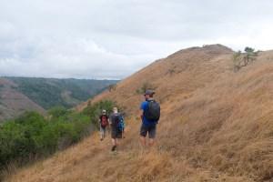 La vallée d'Antongombato, Joffreville 37