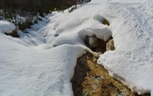 Plateau des Thures, Roubion, Hautes-Alpes 17