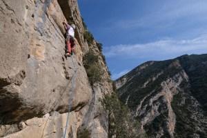 Obaga Negra, Coll de Nargo, Alt Urgell 12