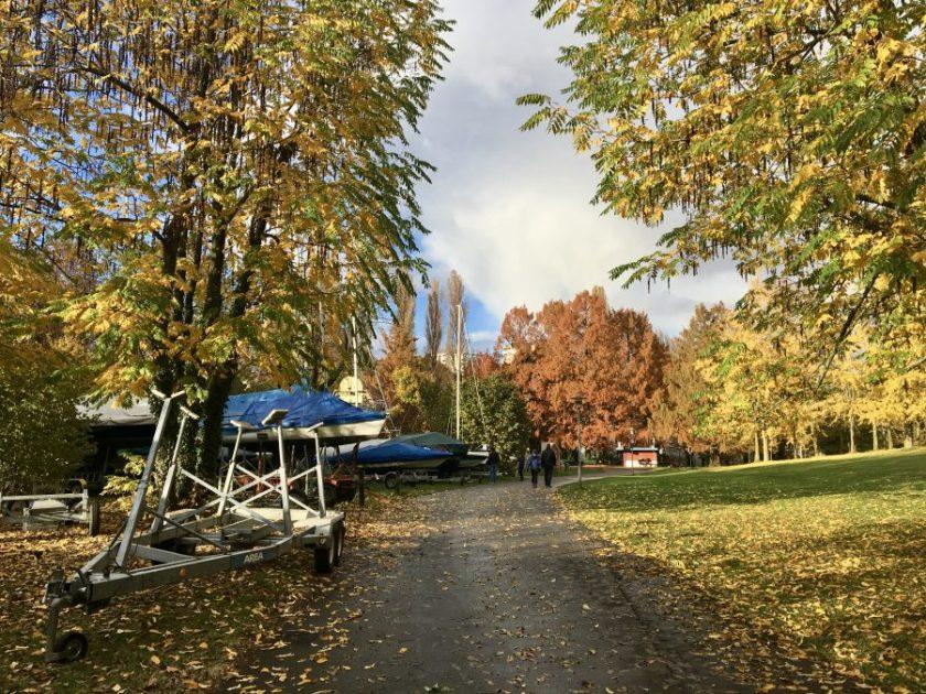 Vidy automne
