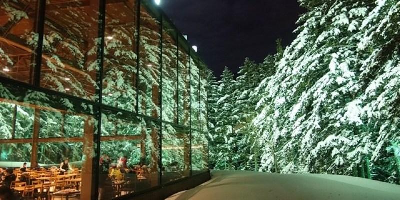 ▌北海道自由行▌超夢幻!♥星野渡假村(TOMAMU)森林餐廳♥此生必訪一次的森林玻璃屋