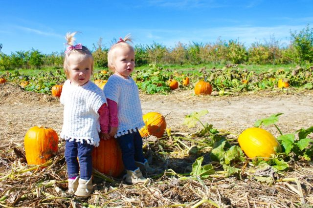 twin-girls-pumpkin-patch