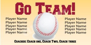 go-team-baseball