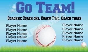 Baseball -Softball