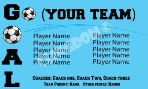 Go-Team-GOAL-turquoise