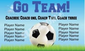 Go-Team-Soccer-sky--3x5