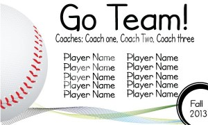 Go-Team-Sport-Baseball-White