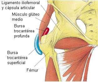 La Trocanteritis puede solucionarse por Endoscopia