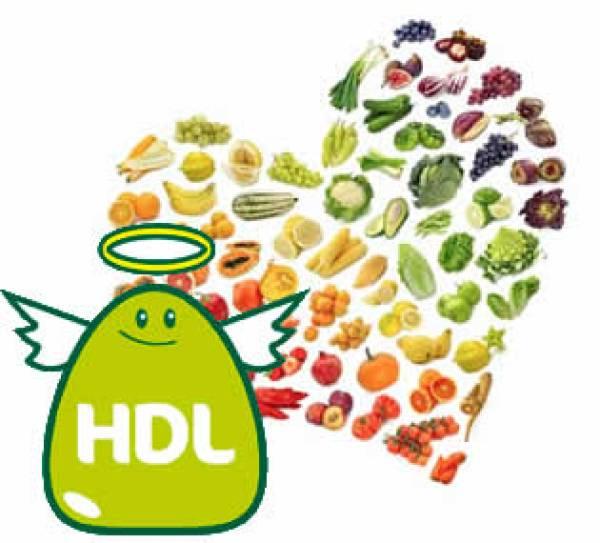Los niveles de colesterol HDL son claves para reducir procesos cardiovasculares.