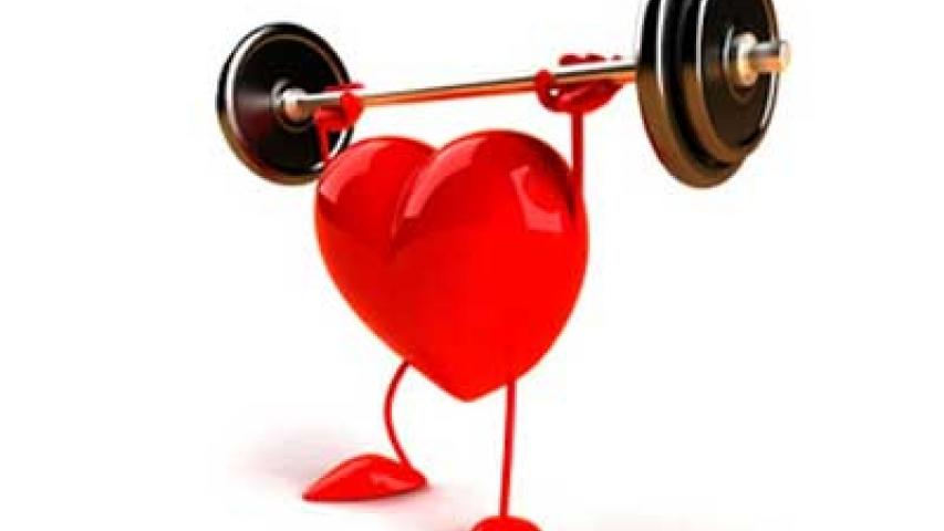 la dislipemia (elevación de colesterol y/o triglicéridos) es uno de los factores de riesgo cardiovascular más importantes.
