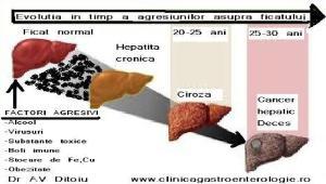 evolutia-bolilor-de-ficat-2