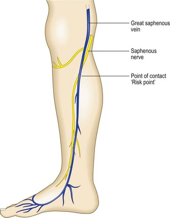 Anatomy | Clinical Gate