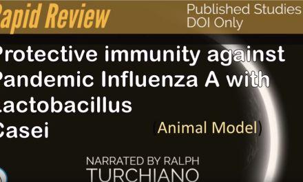 Significant Flu protection via Lactic Acid bacteria