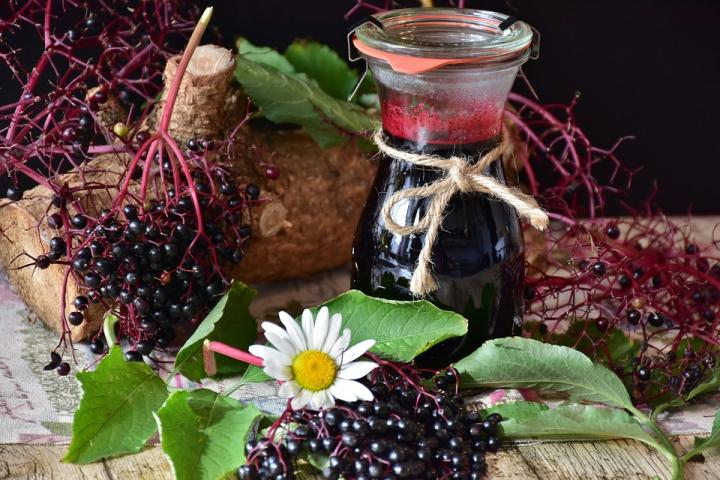 Elderberry shown to fight Influenza at multiple stages