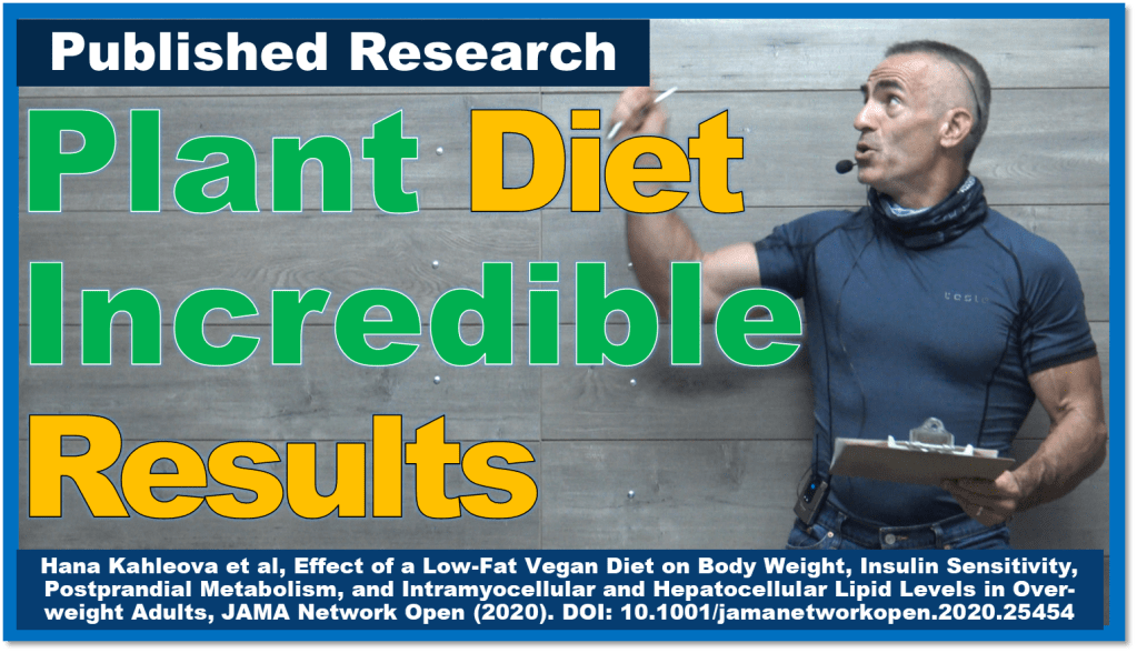 Plant-based diet ramps up metabolism