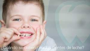 ¿Cuándo se deben caer los dientes de leche? | Dentistas en Palma de Mallorca