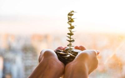 Tips para hacer crecer su Negocio