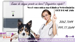Exame de Sangue Pet Home 24 horas Veterinária