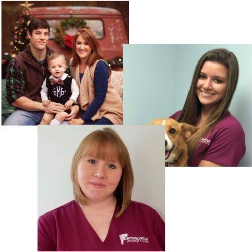 Russellville Animal Clinic Doctors