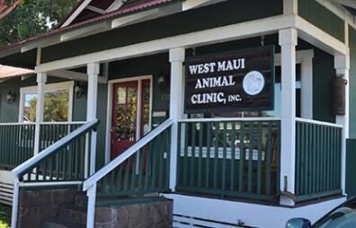 Maui Animal Clinic