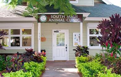 South Maui Animal Clinic
