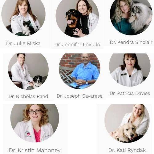Brighton Eggert Animal Clinic Doctors