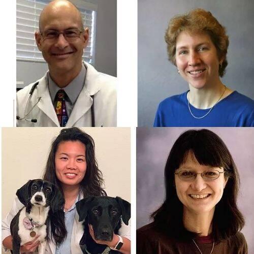 Oakridge Veterinary Clinic Doctors