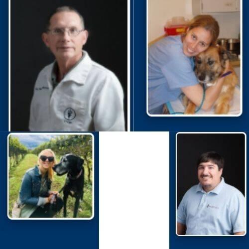 Battlefield Animal Clinic Doctors