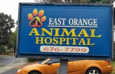 East Orange Animal Hospital