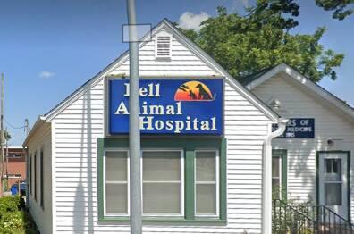 Bell Animal Hospital Belleville