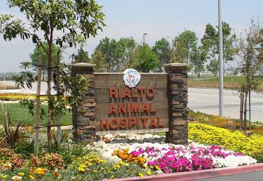 Rialto Animal Hospital Hours