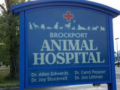 Brockport Animal Hospital Services