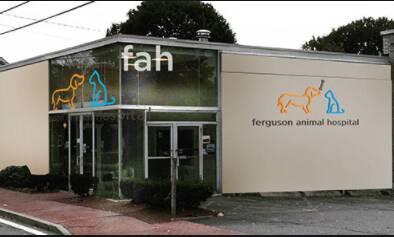 Ferguson Animal Hospital